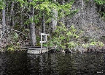 Chocorua Lake, 4.29.2017