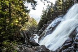 Georgiana Falls Trail, 10.28.2017